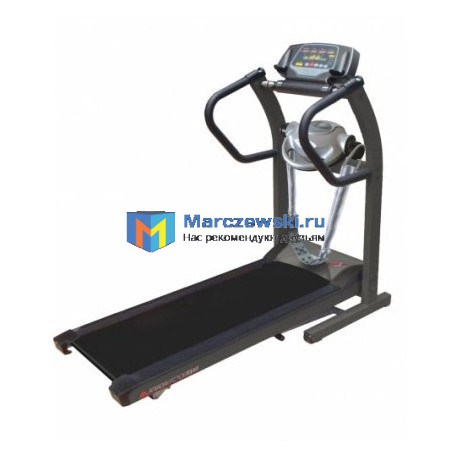 American Motion Fitness 8210